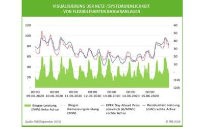 Analyse: Biogasanlagen produzieren Strom flexibel und bedarfsgerecht