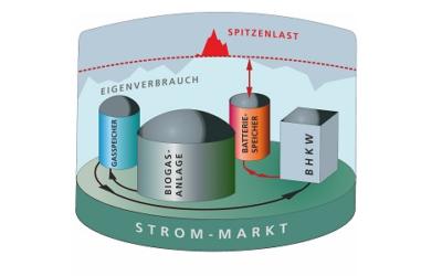 Biogasanlagen mit Batteriespeichern kombinieren