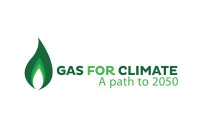 Aktionsplan zur Förderung von erneuerbarem Gas