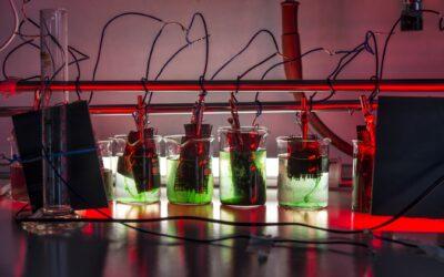 Faszination Energie: Bakterien als Wasserstoff-Produzenten
