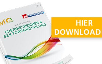 """Sonderpublikation """"Energiespeicher & Sektorenkopplung"""" 1/2019"""