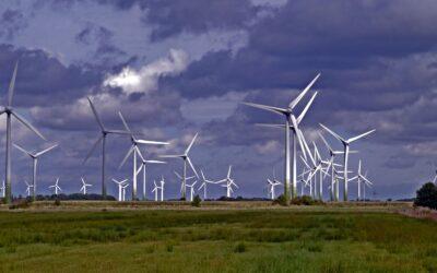 Im Profil: Der Bundesverband Windenergie